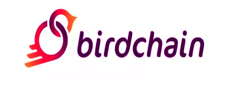 Lietuviškų ICO apžvalga: BIRDCHAIN