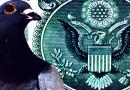 Kapitalo rinkos 2019-07-11. Balandžius lesinti griežtai draudžiama!