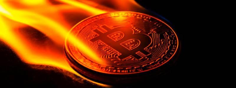 bitcoin apžvalga 2021)